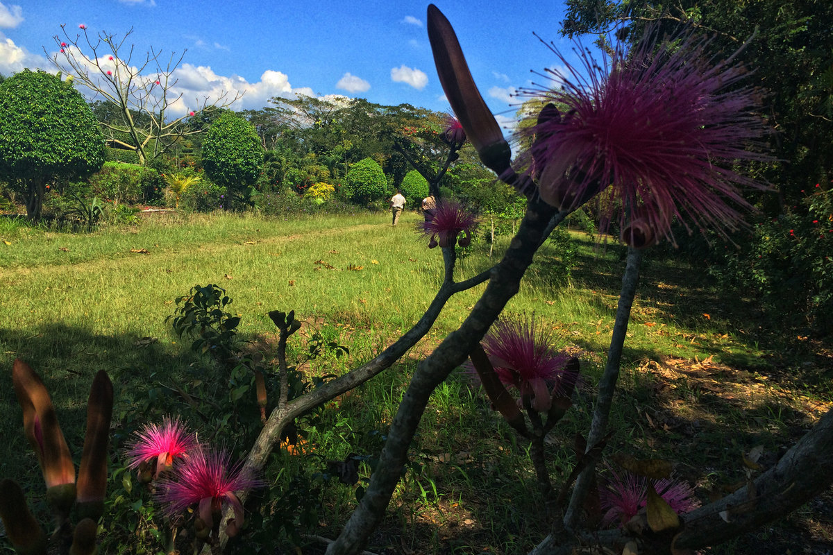 Photo: Marie Yolette B. Daniel - UN/MINUSTAH